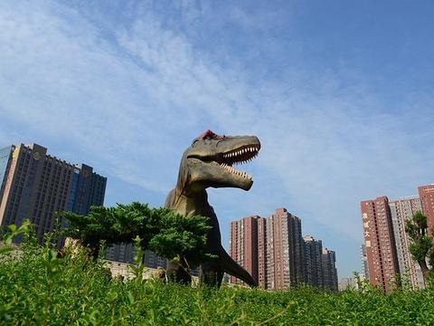 陕西自然博物馆门票_2020陕西自然博物馆-旅游攻略-门票-地址-问答-游记点评,西安 ...