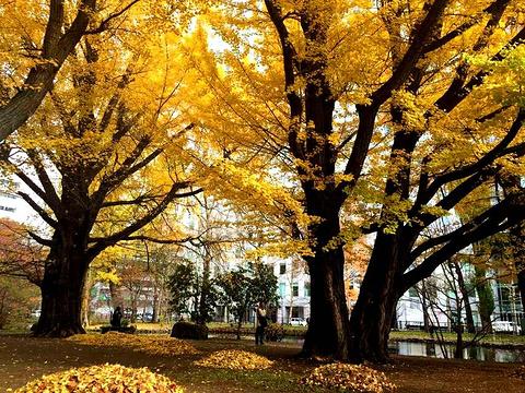 中岛公园旅游景点攻略图