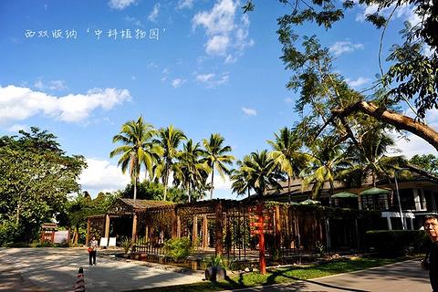 曼贺蚌傣家村寨旅游景点攻略图