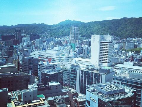 神户市役所旅游景点图片