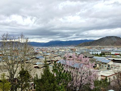 龟山公园旅游景点攻略图