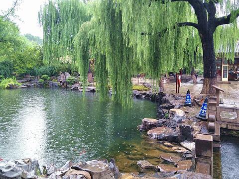 漱玉泉旅游景点图片