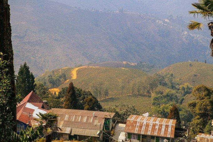 喜马拉雅动物园图片