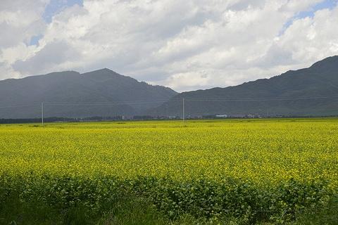 昭苏草原旅游景点攻略图