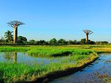 马达加斯加旅游景点攻略图片