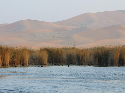 阿拉善沙漠世界地质公园旅游景点图片