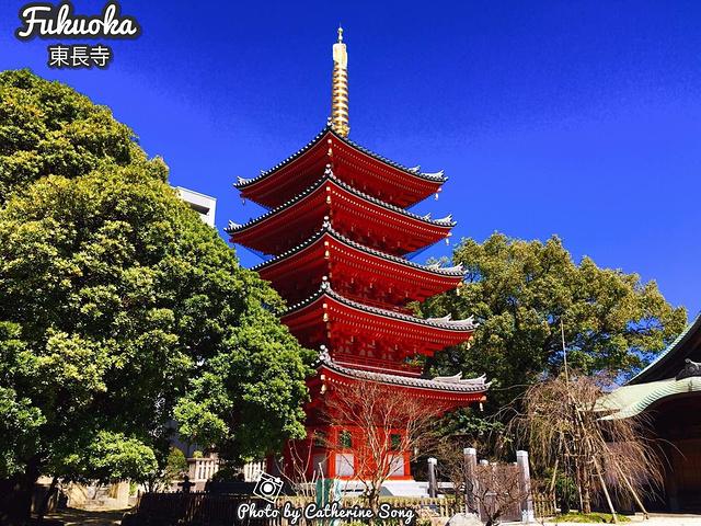 """""""作为弘法大师创建的寺庙是日本最古老的_东长寺""""的评论图片"""