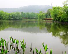 江南第一山,莫干山周末自驾游
