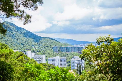 香港中文大学的图片