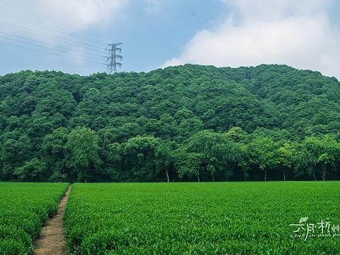 云栖竹径旅游景点图片