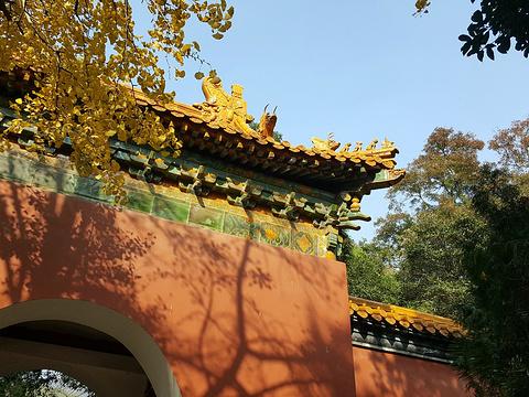 明孝陵旅游景点图片