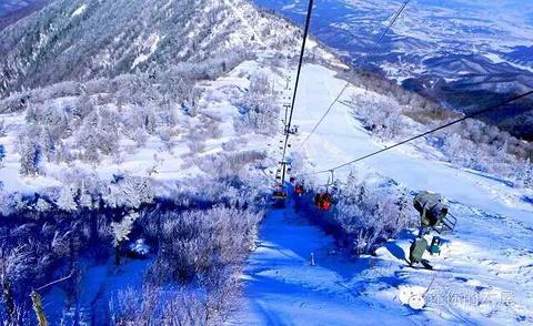 亚布力观光缆车及世界第一滑道的图片