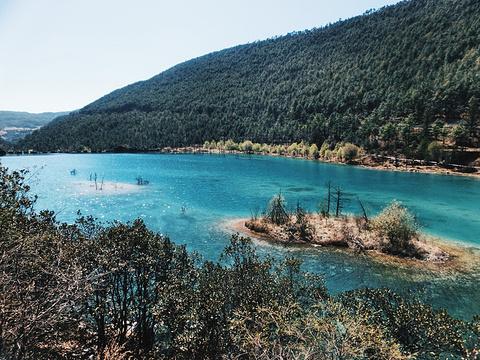 白水河旅游景点攻略图