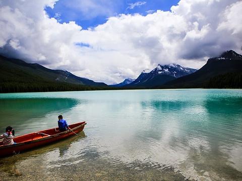 Waterfowl lake旅游景点图片