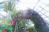 函馆市热带植物园