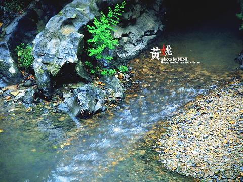 石跳桥旅游景点图片