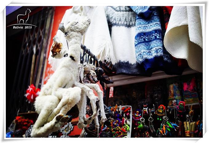 Witches Market图片