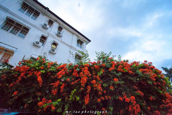 瑞士酒店(Hotel Suisse Kandy)图片