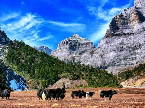 香格里拉巴拉格宗风景名胜区旅游景点图片