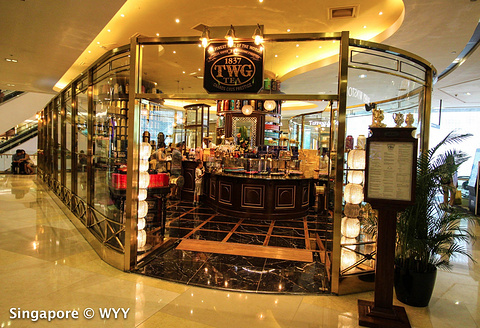 TWG Tea at Republic Plaza旅游景点攻略图