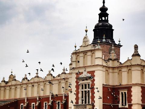克拉科夫市政厅大楼旅游景点图片