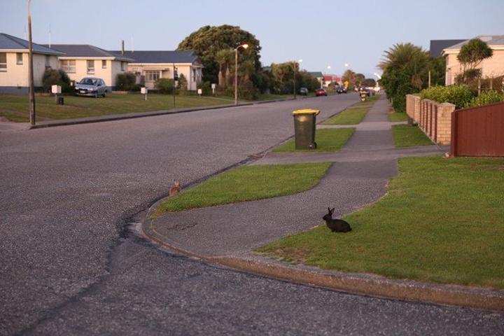 """""""伴着落日的余晖在小镇里走一走,街道上空无..._霍基蒂卡""""的评论图片"""