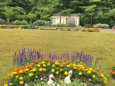滨名湖旅游景点图片