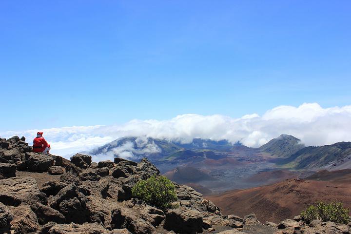 """""""这是来到Haleakala必定要去观摩的一种神奇植物神奇的银剑。圣诞老人也来火星凑热闹啦_哈雷阿卡拉国家公园""""的评论图片"""
