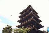 京都冈本织物和服(清水坂店)