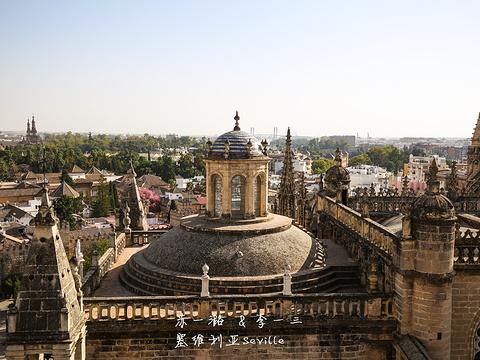 吉拉尔达塔旅游景点图片