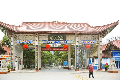龙泉公园旅游景点攻略图