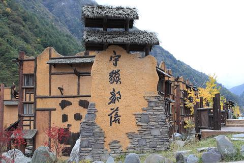 中国卧龙大熊猫博物馆