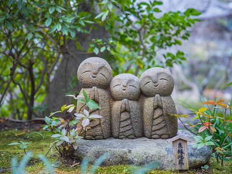 长谷寺旅游景点图片