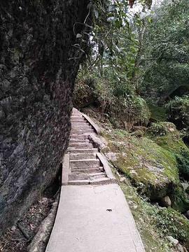龙泉花果山风景区旅游景点攻略图