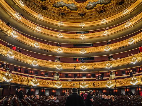 里西奥大剧院旅游景点图片