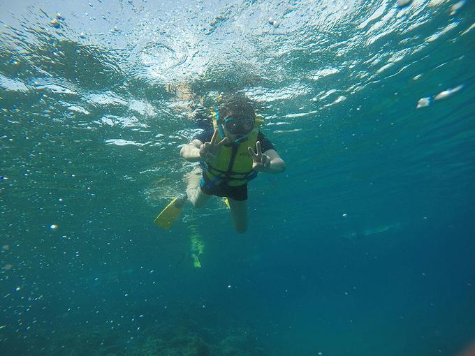 出海浮潜图片
