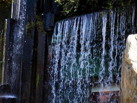 南莲园池旅游景点图片