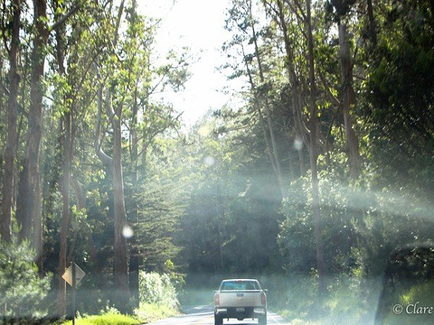 金门公园旅游景点图片