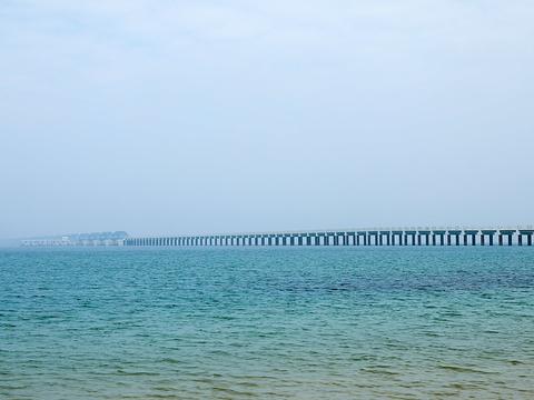 中石化原油码头旅游景点图片