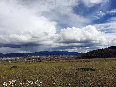 香格里拉大草原旅游景点攻略图
