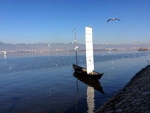 海埂大坝旅游景点图片