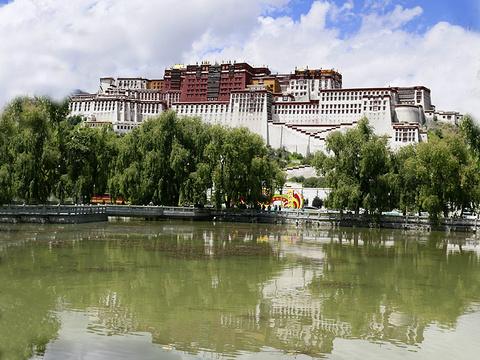 布达拉宫广场旅游景点图片