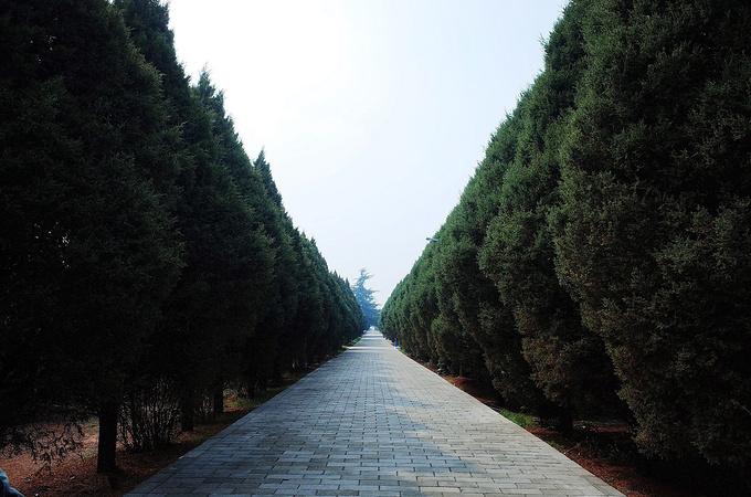 秦始皇陵图片