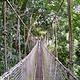 西双版纳雨林谷