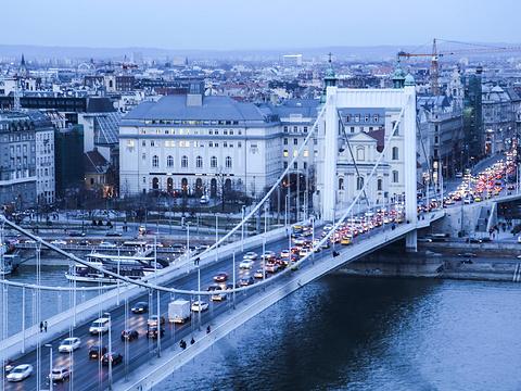 伊丽莎白桥旅游景点图片