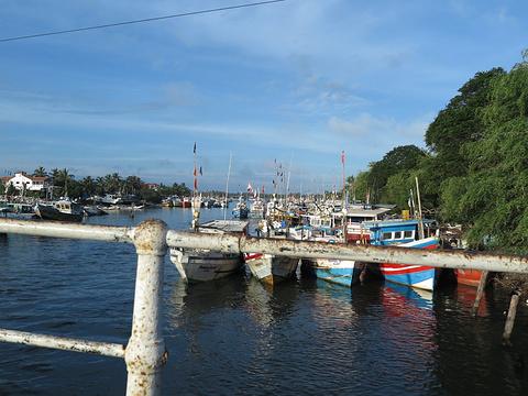 尼甘布泻湖旅游景点图片