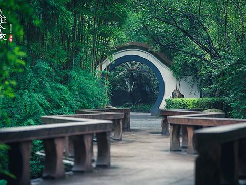 杜甫草堂旅游景点图片
