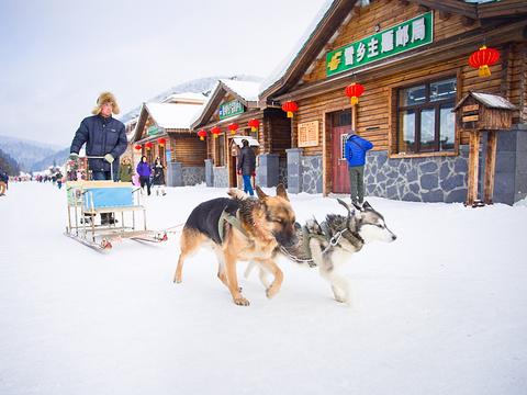 雪乡主题邮局旅游景点图片