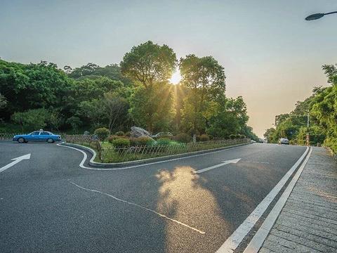 文曾路旅游景点图片