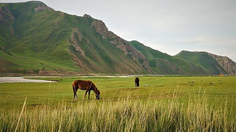 巴音布鲁克草原旅游景点攻略图